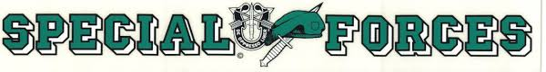 Rear Window Decals Continued Usa Green Beret Store