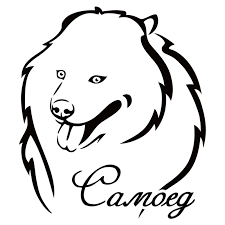 Cs 1743 Samoyed Dog Reflective Funny Car Sticker Waterproof Vinyl Decal For Auto Car Stickers Styling Removable Car Decor Car Stickers Aliexpress