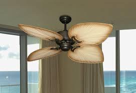 ay ceiling fan in oil rubbed bronze