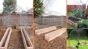 trellis tunnel and raised garden bed