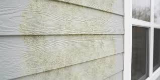 how to remove green algae from vinyl siding