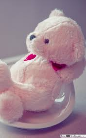 cute teddy bear hd wallpaper