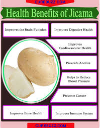 8 health benefits of jicama getatoz
