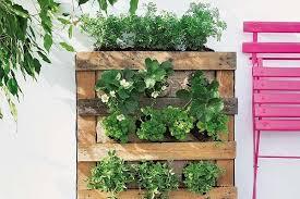 vertical garden and a diy plastic wall