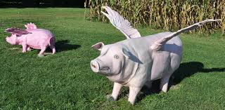 pig hog statues