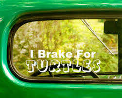 2 I Brake For Turtles Decal Stickers For Car Window Bumper Laptop Truck Jeep Rv Ebay