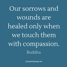 buddha quote our sorrows and wounds are healed