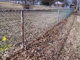 Ugly Chain Link Fence Can Ruin A Careful Landscape