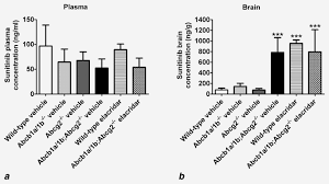 Brain accumulation of sunitinib is restricted by P‐glycoprotein ...