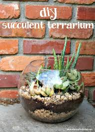 succulent terrarium in a clear glass