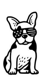 397 Beste Afbeeldingen Van Franse Bulldog In 2020 Franse Bulldog