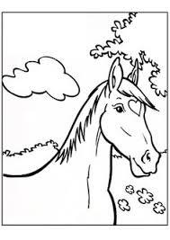 14 Beste Afbeeldingen Van Thema Paarden Paarden Paard Knutselen
