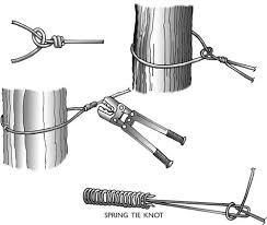 Constructing High Tensile Wire Fences Home Virginia Tech High Tensile Fence Fence Construction Wire Fence