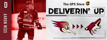 Aaron Ness Recalled To Coyotes - TucsonRoadrunners.com
