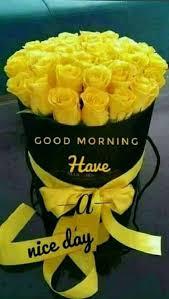 38 good morning hd flower images for