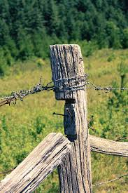 Barbed Wire Fence Post Photograph By Selena Lorraine