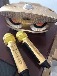 Loa karaoke SD 306 (Kèm theo 2 mic)