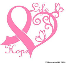 Amazon Com Ur Impressions Pnk Cancer Awareness Ribbon Heart Butterfly Vine Life Hope Decal Vinyl Sticker Graphics For Car Truck Suv Van Wall Window Laptop Pink 6 4 X 5 5 Inch Uri275 Automotive