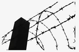 Fence Clipart Thorn Transparent Background Barbed Wire Fence Clipart Hd Png Download Transparent Png Image Pngitem