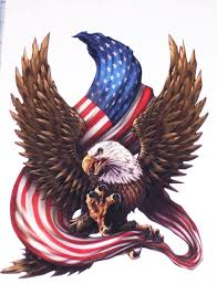Bald Eagle Holding American Flag Rv Motorhome Wall Window Graphic Decal Decals Graphics Car Truck Hood 4x4 Sticke Eagle Painting American Bald Eagle Bald Eagle