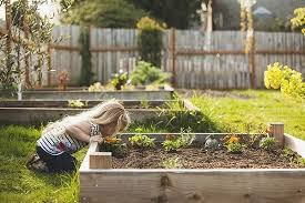 how to make a raised garden bed what