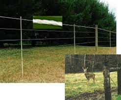 Electric Fence For Deer Wildlife Control Max Flex Fence Systems Offers Many Styles Of Permanent And Temporary Fencing To Control Deer And Other Wildlife