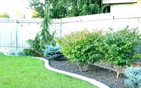 Simple Landscaping Ideas Backyard Wilted Co
