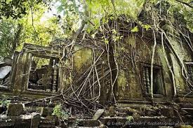 ラピュタの世界、猿島に。 | ライフワークプランナーYusuke Shiinoのブログ