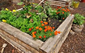 15 raised wooden garden bed designs