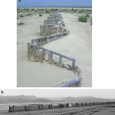 Windbreak Fences Constructed In The Saemangeum Area A Fence Made Download Scientific Diagram