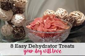 8 insanely easy dehydrator dog treats