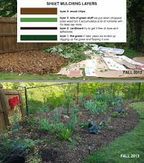 how to start a garden today top 10 tips