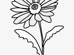 Big Daisy Wall Decals Gerbera Black And White Art Name Katie Oopsy Vamosrayos