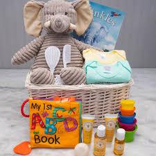 the baby ellie newborn gift basket