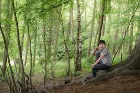 Gabriel in Perry Wood | Child Portraits | Babies & Children | Pixoto