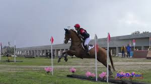008XC Tamra Smith on Danito CCI3*S Cross Country FCHP February ...