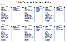 the 3 week workout routine that will