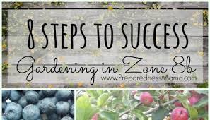8 steps to garden success in zone 8b