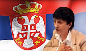 Image result for mira rajš""