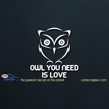 Owl You Need Is Love Wall Window Decal Sticker