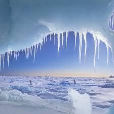 icy wilderness desktop wallpapers 1024x1024