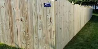 Growing Fence Friendly Vines Frederick Md Armor Fence Maryland