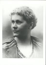 The Women's Suffrage Petition: Te Petihana Whakamana Poti Wahine | Story |  DigitalNZ