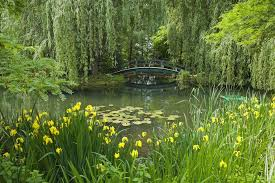 claude monet s gardens at giverny our