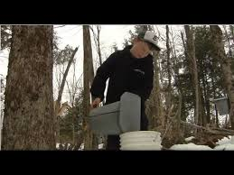 03 10 20 Making Old Fashioned Maple And The Vt Master Naturalist Program On Across The Fence Youtube