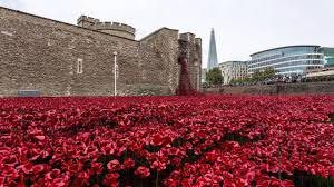 the tower of london poppies you
