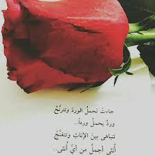 10 عبارات عن الورد الجوري مختارات من أجمل ما ك تب عن الورد