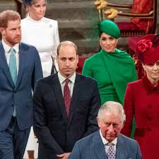 Prince Harry and Prince William Did Not Talk for Months Over Royal Exit