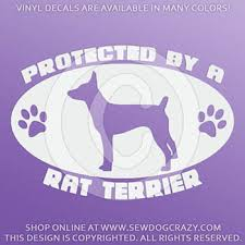 Protected By A Rat Terrier Decal Sew Dog Crazy