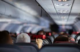 coronavirus flight refund policies and